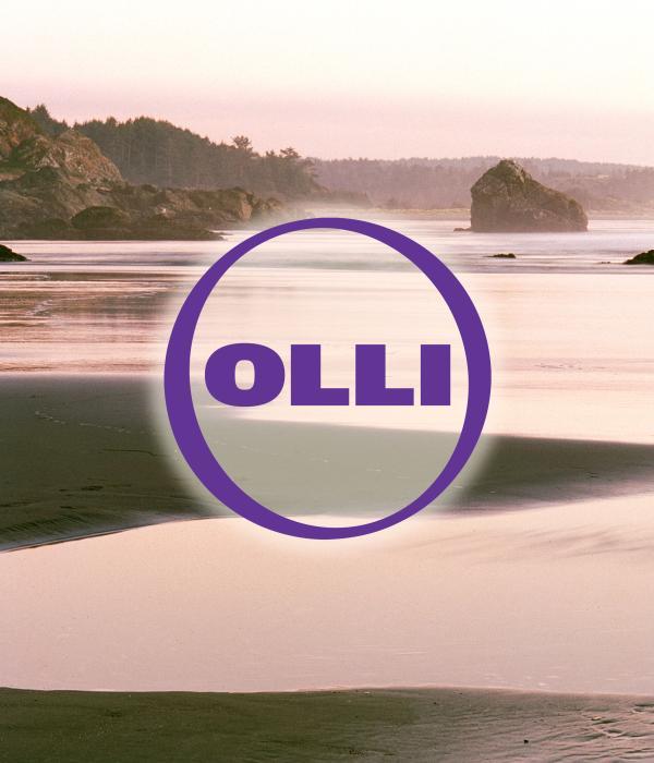 OLLI at HSU
