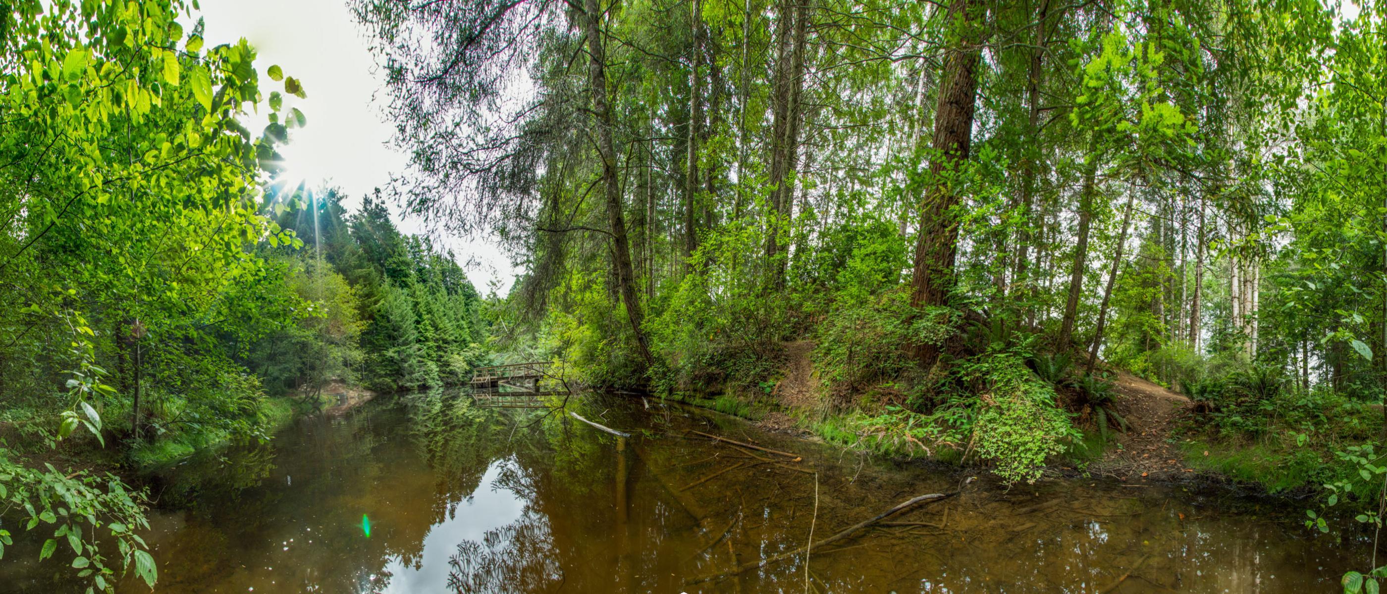 HSU pond