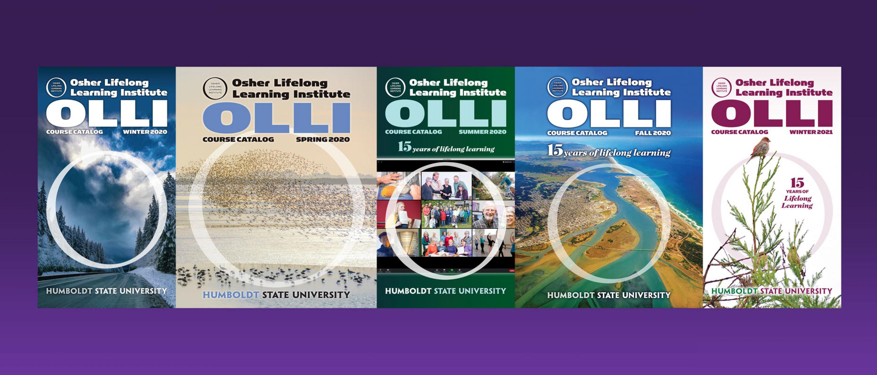 Covers of OLLI course catalogs over the past year