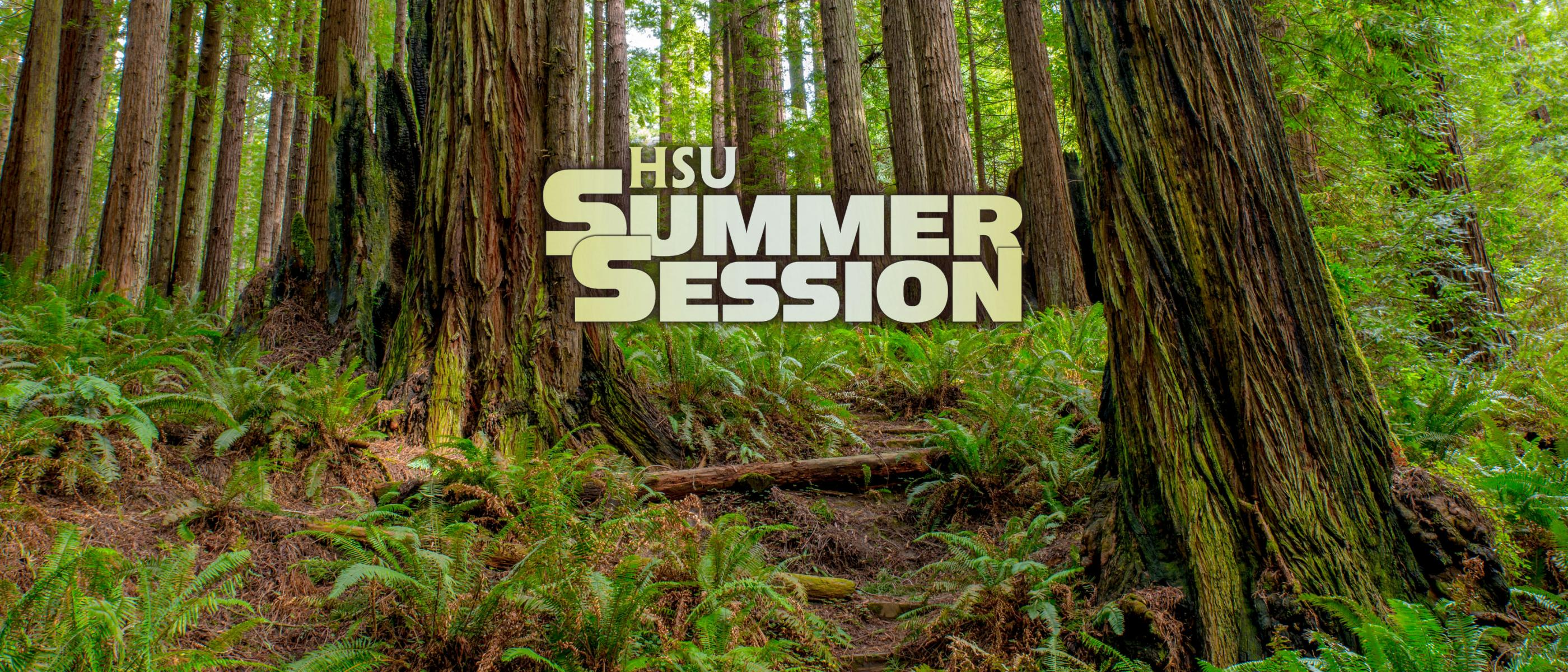 HSU Summer Session