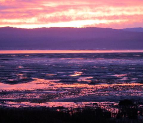 sunrise over Humboldt Bay