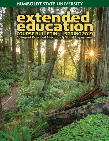 Cover of Spring 2019 Bulletin