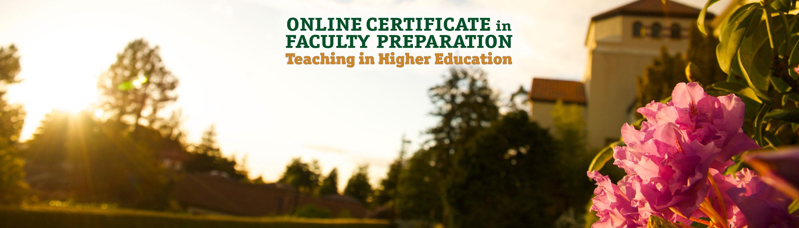 The Road To Higher Education With >> Faculty Preparation Teaching In Higher Education Online Certificate