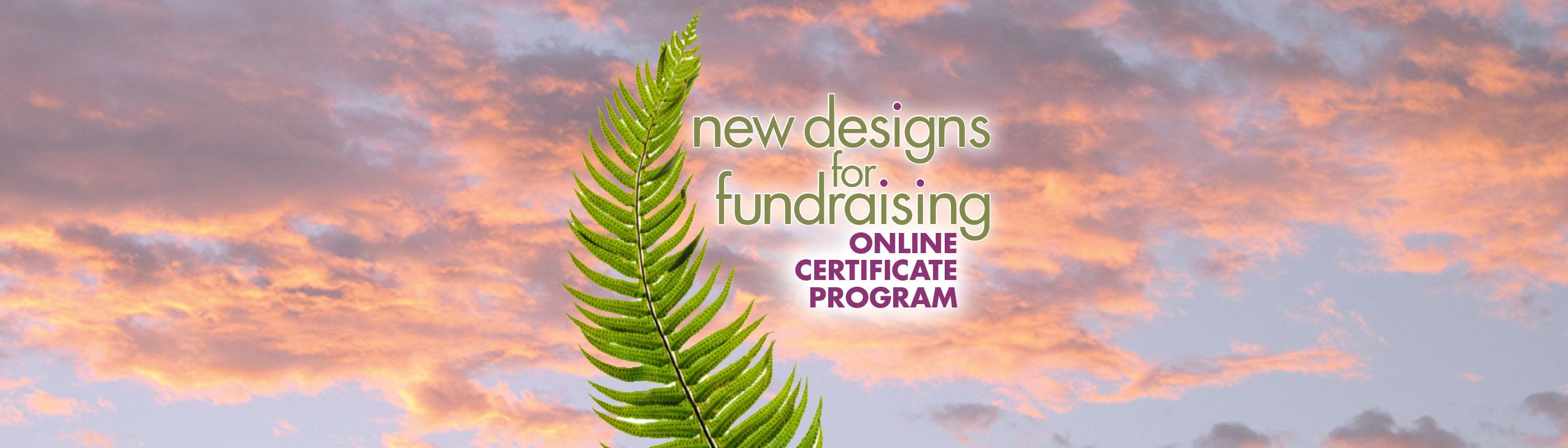 New Designs for Fundraising Online Certificate Program