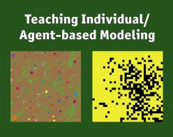 Teaching Individual/Agent-Based Modeling