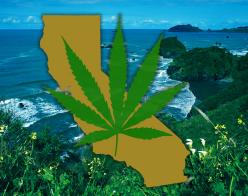 Map of California and cannabis leaf