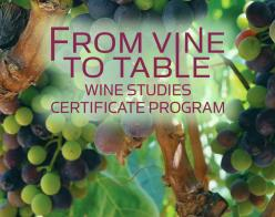 From Vine to Table Wine Studies Certificate Program [grapes in background]